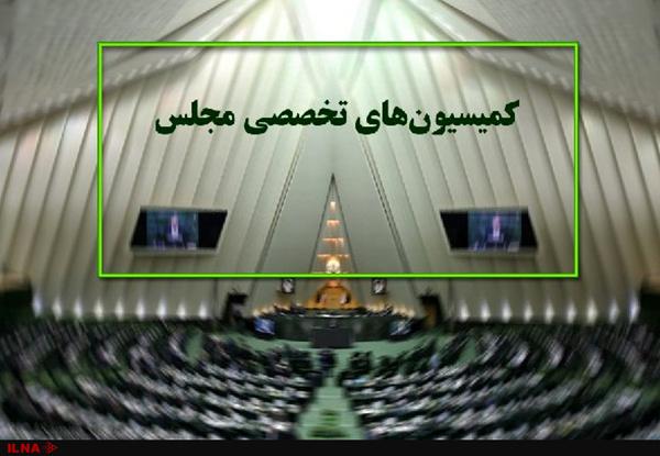 بررسی دلایل جانباختن برخی هموطنان در تشییع پیکر شهید سلیمانی در مجلس