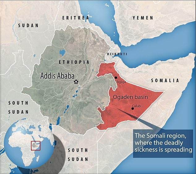 شیوع یک بیماری مرموز در اتیوپی: خونریزی از دهان و بینی و مرگ