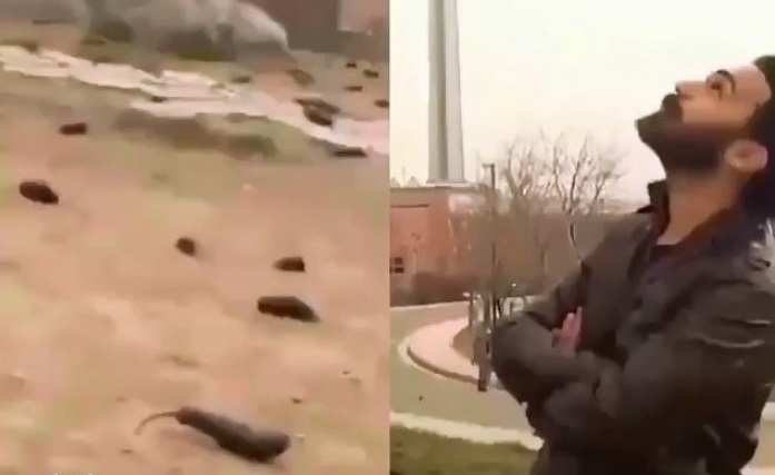 ماجرای بارش بادمجان در آسمان تهران چیست؟