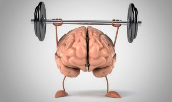 چگونه با مطالعه ماهیچههای مغز را تقویت کنیم؟