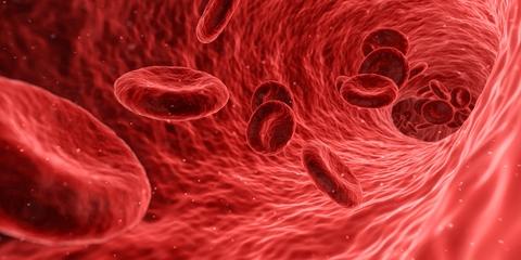 پلاکت خون