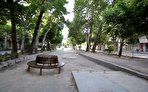 چهارباغ اصفهان؛ یک سر و هزار سودا (+فیلم)