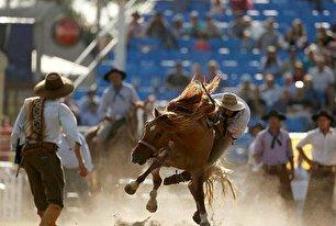 رام کردن اسب در اروگوئه (عکس)