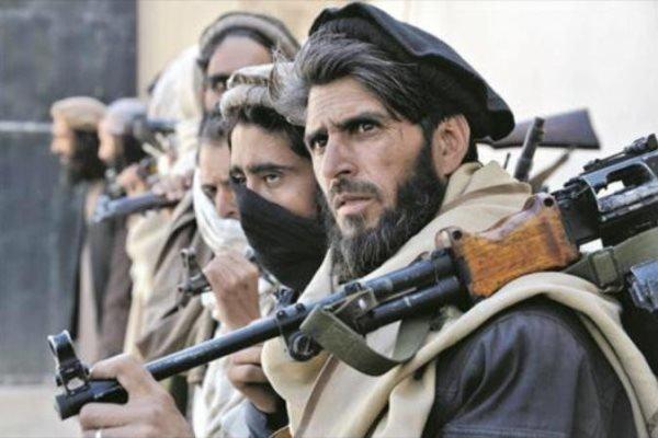 15 عضو طالبان در غزنی افغانستان کشته شدند