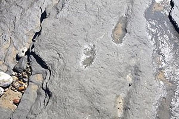 کشف ردپای 950 هزار ساله انسان (+عکس)