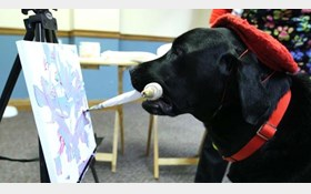 سگ نقاش لقب