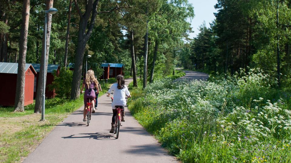 فنلاد پرچمدار ساعت کاری شناور/  تطابق کار و زندگی فرهنگ جدید فنلاند