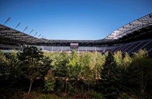 استادیوم زیبای فوتبال، جنگل شد! (عکس)