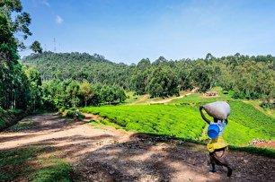 رواندا چگونه به یکی از پاکترین کشورهای زمین تبدیل شد؟