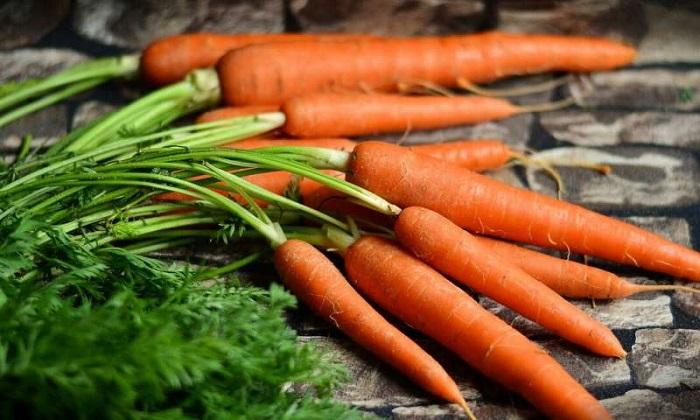 از بهترین مواد غذایی برای بهبود عملکرد کلیوی