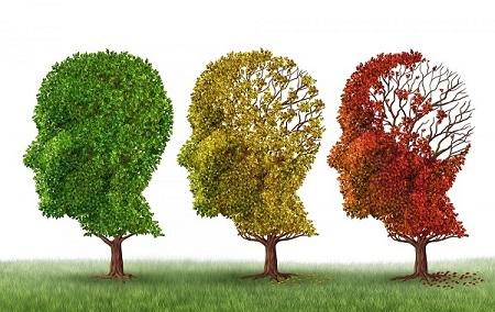 کلینیک مغز و اعصاب عصر ایران/ بروزرسانی مهر 98