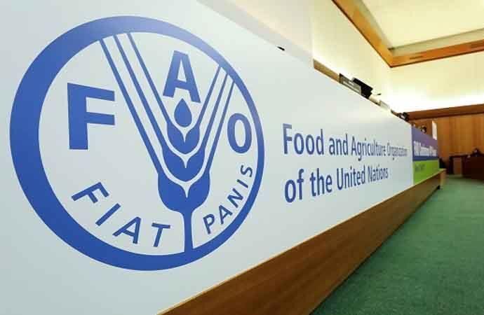 گام جدید فائو برای کمک به مدیریت خشکسالی دریاچه ارومیه