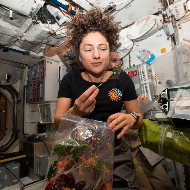 کشاورزی در ایستگاه فضایی بینالمللی (+عکس)