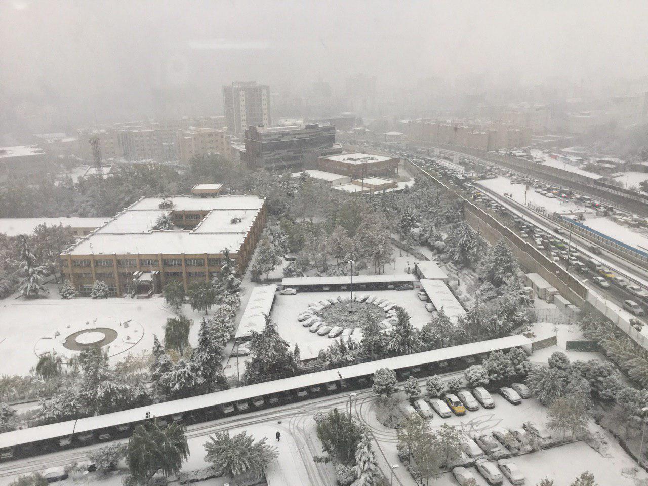 برف نو، برف نو، سلام، سلام! (+عکس)