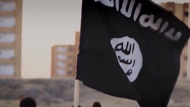 پنتاگون: داعش از عملیات ترکیه در سوریه نفع میبرد