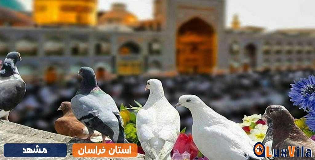 شمال شرقی ترین و جنوبی ترین مناطق توریستی ایران