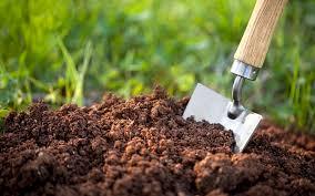 ۶۰ درصد زمینهای کشاورزی کشور فقیرند