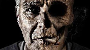 دانستنیهای جالب دربارهی سیگار