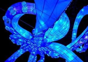 جشنواره نور در چین (عکس)