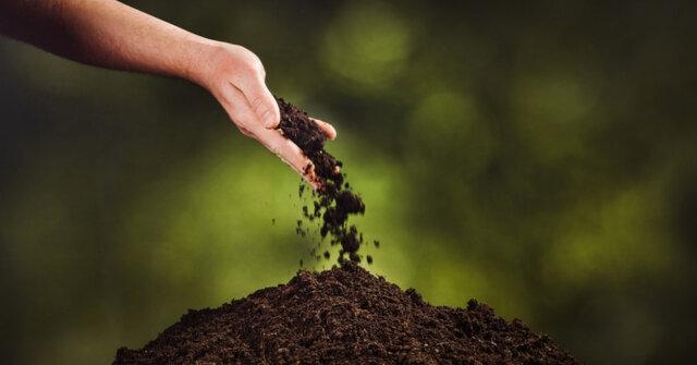 تبدیل سریع جنازه به خاک