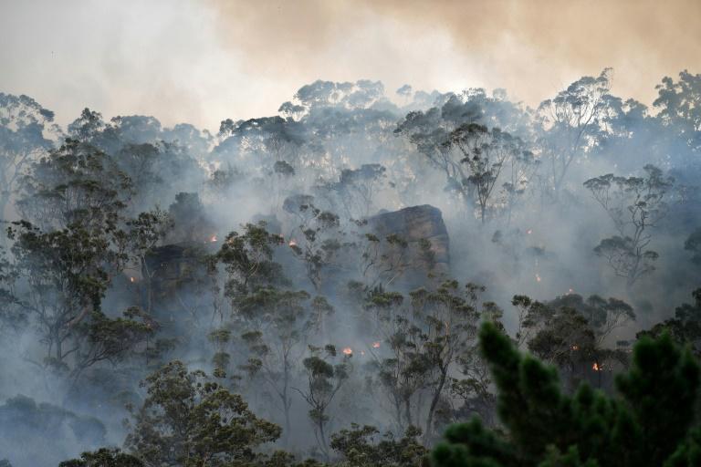 آتش سوزی استرالیا بحران آب و هوای سیدنی