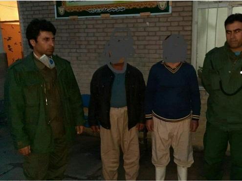 عوامل کشتار خرس در ارومیه دستگیر شدند
