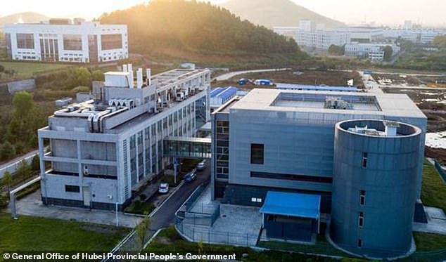 سرمایه گذاری 3.7 میلیون دلاری آمریکا روی پروژه تحقیقات از خفاشهای حامل ویروس کرونا در چین