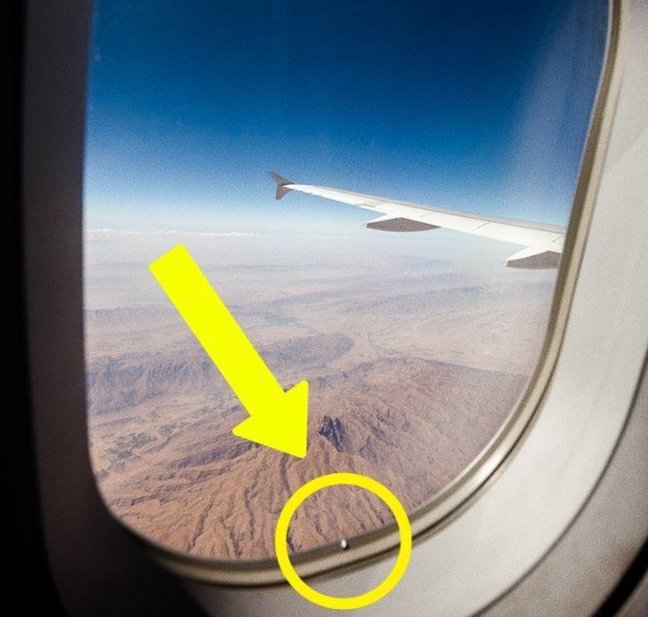 10 راز هواپیما که هیچگاه مهماندارها به شما نمیگویند
