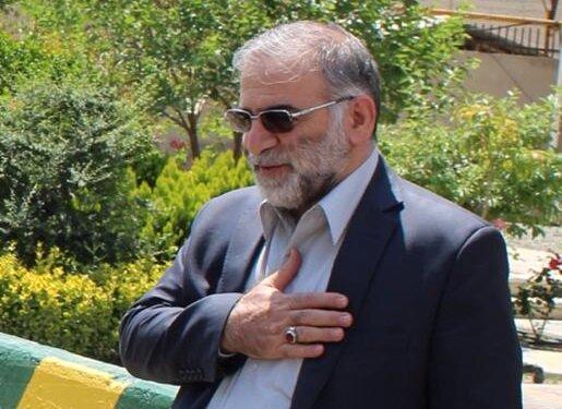 به زودی/ ارائه گزارش کمیسیون امنیت ملی درباره علت ترور شهید فخریزاده
