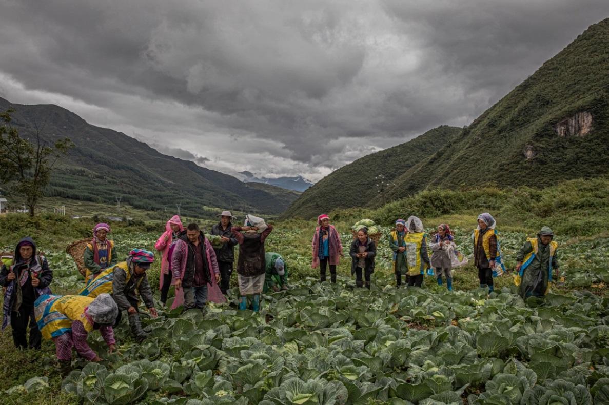 نحوه مبارزه چین با فقر