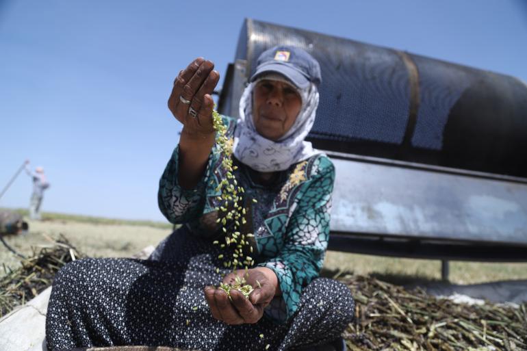 تغییر ارزشهای سنتی در جنگ سوریه/ زنان سر کار میروند