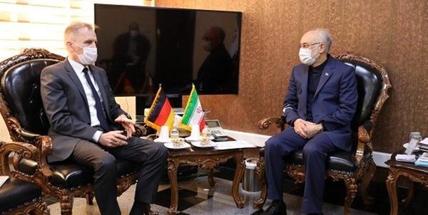 دیدار سفیر آلمان در تهران با صالحی