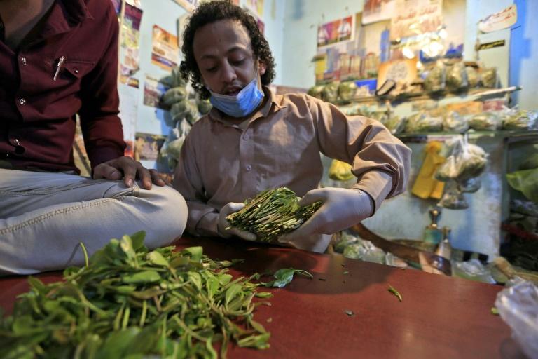 فروشنده قات در بازار صنعا یمن