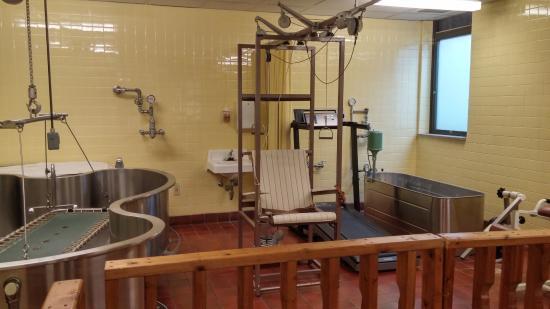 موزه پزشکی سیریراج