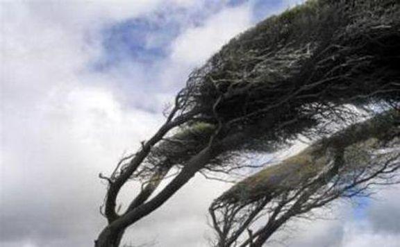 پیش بینی وزش باد نسبتا شدید در مازندران