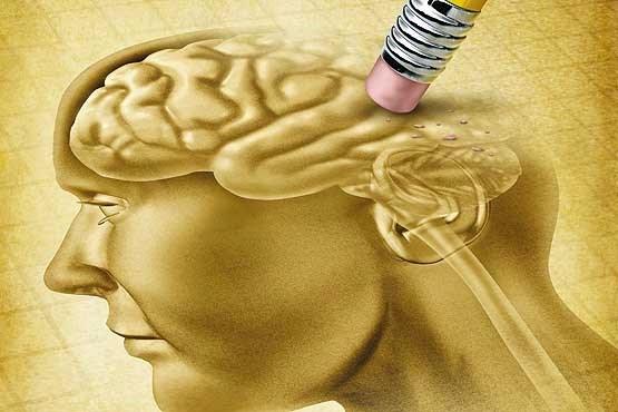 توصیه های مدیر انجمن آلزایمز درباره مواجهه با این بیماری؛ زمان را از دست ندهید