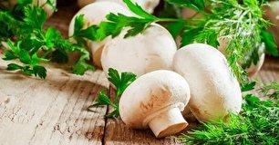 از خواص قارچ چه میدانید؟
