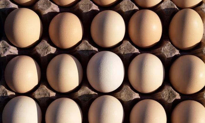 آنچه در نتیجه مصرف روزانه تخم مرغ رخ میدهد