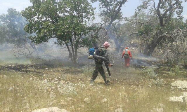 آتش سوزی جنگلهای گچساران