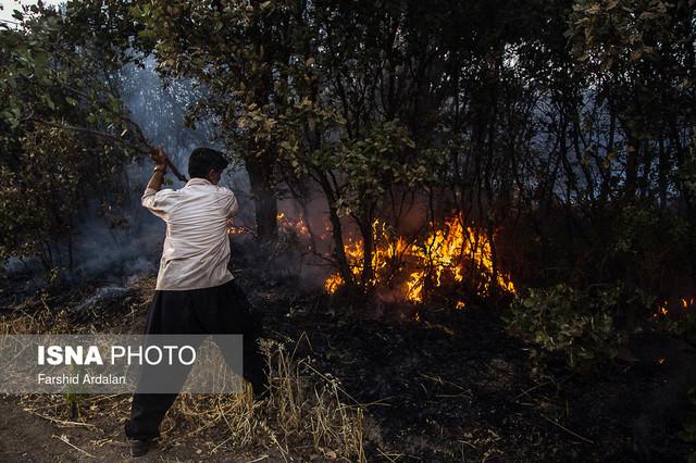 رفع محدودیت ها و بازگشت دوباره آتش به جنگلها