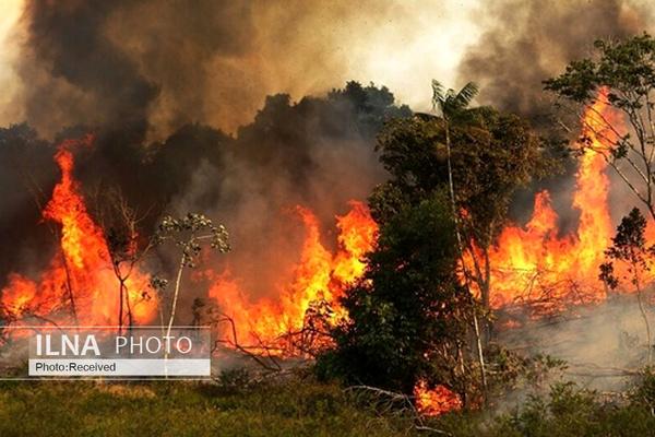 آتشسوزی گسترده در جنگلهای پاوه کرمانشاه/ جانباختن یک نیروی امدادی هنگام اطفا آتش
