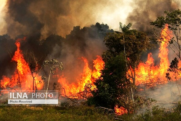 تداوم آتشسوزی در جنگلهای پاوه برای ششمین روز متوالی