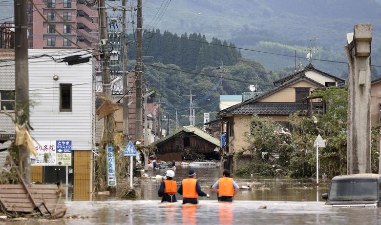 سیل ژاپن تصویر
