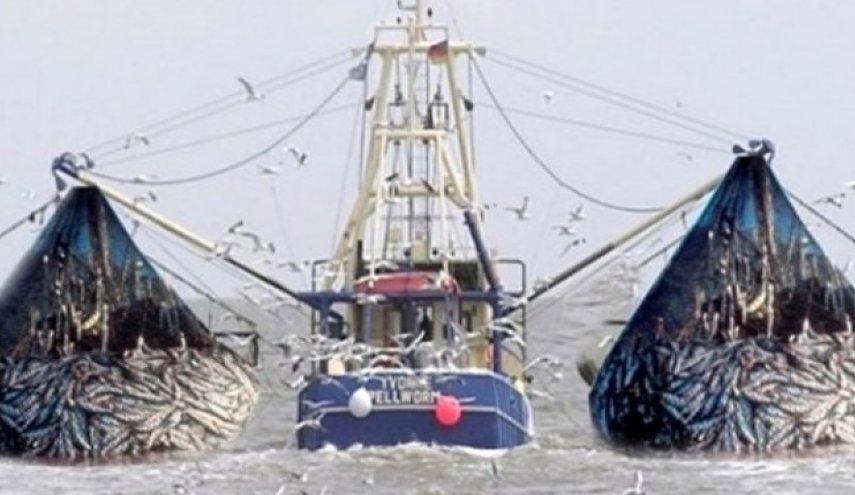 صید شبانه کشتیهای چینی در آبهای جنوب با مشارکت