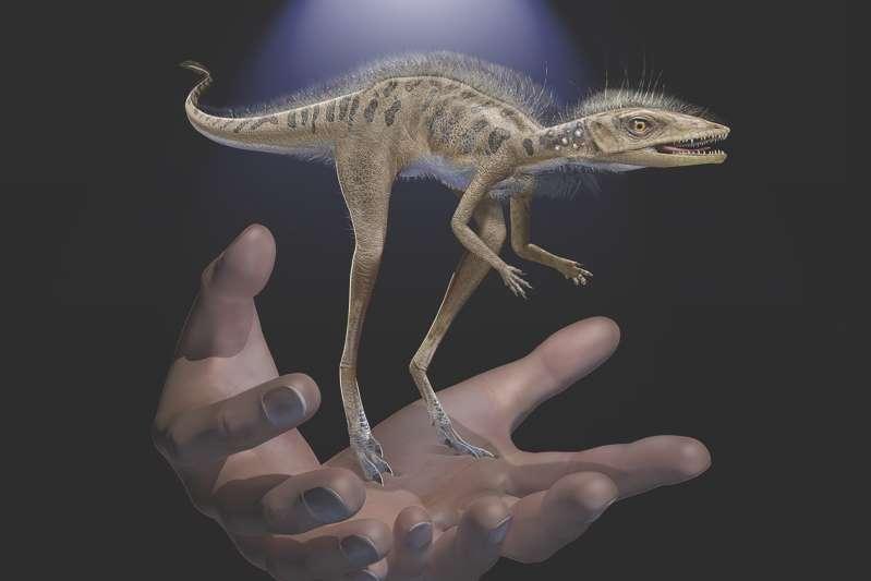 کشف دایناسوری کوچک