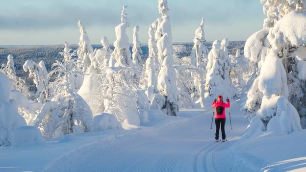زمستانهای سخت فنلاند