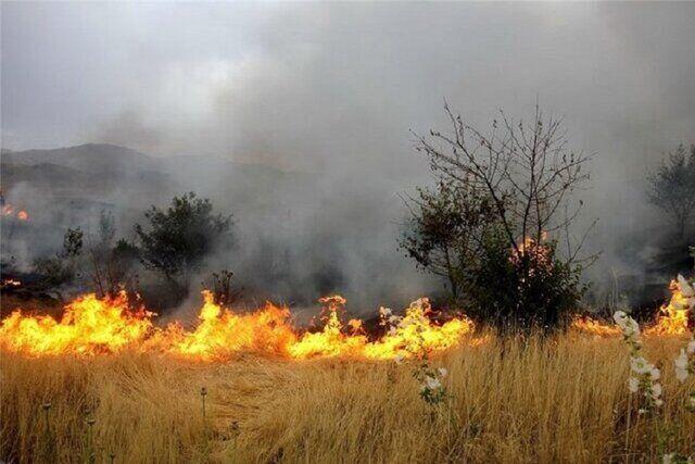 آتشسوزی در مراتع