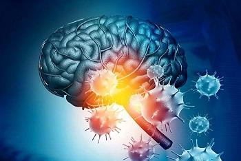 تاثیرات مخرب ویروس کرونا بر مغز و راهکارهایی ساده برای جلوگیری