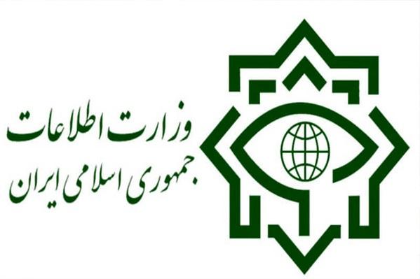 وزارت اطلاعات: شناسایی باند بزرگ قاچاق سلاح و مهمات در استان البرز