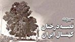 چطور موجودات هزارساله را در ایران میکُشیم؟ / هشدار: این فیلم تصاویر دلخراشی دارد (فیلم)